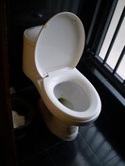 Eitjes van aarsmaden kunnen aan de wc-bril zitten