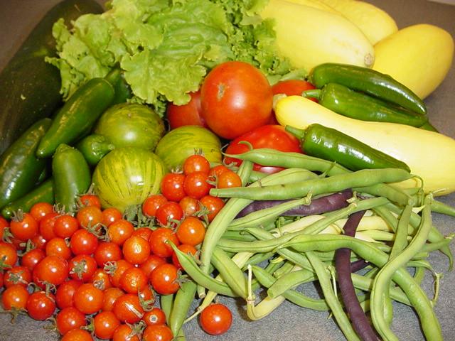 groentes probiotica